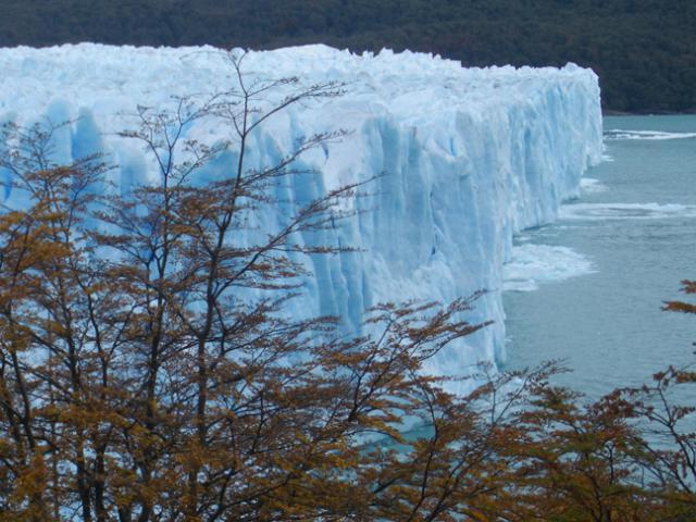 glaciar14