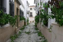 Corpus Chiquito 2007